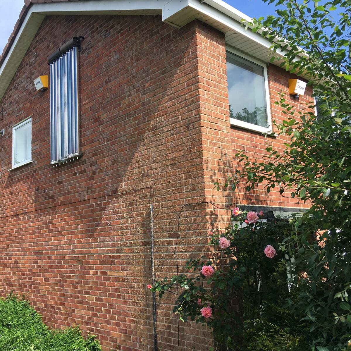 ivy removal from walls and guttering of a house